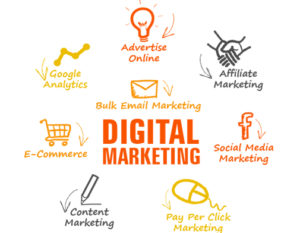 Wellington Internet Marketing agency